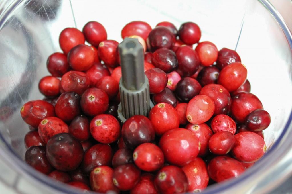 Cranberry Relish-1