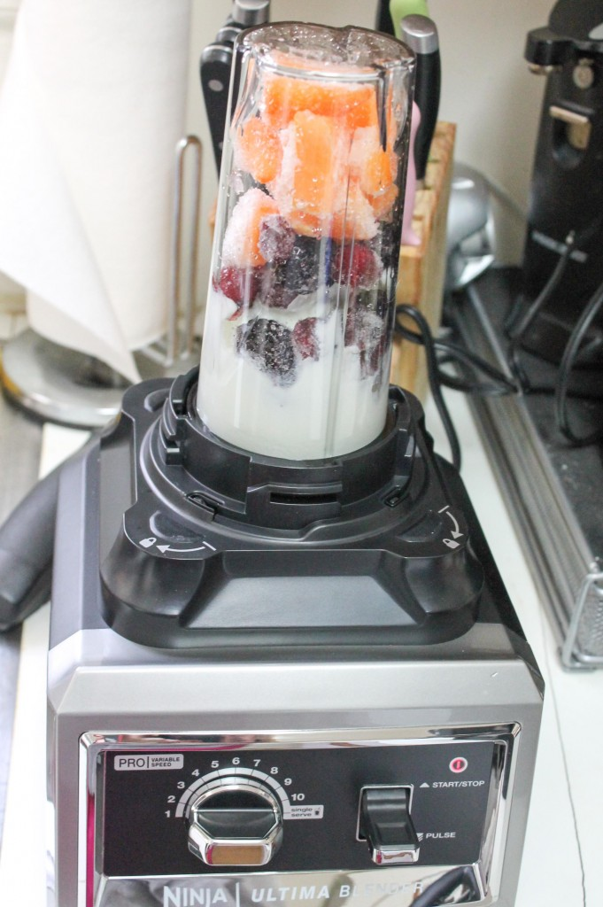 Ninja Blender Review-3