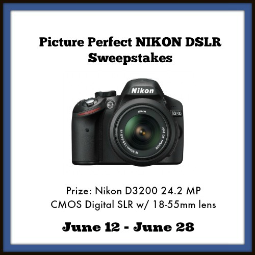 Picture Perfect NIKON DLSR Sweepstakes