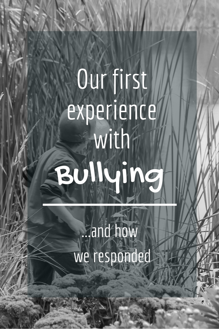 Our first experience with BULLYING … and how we Responded