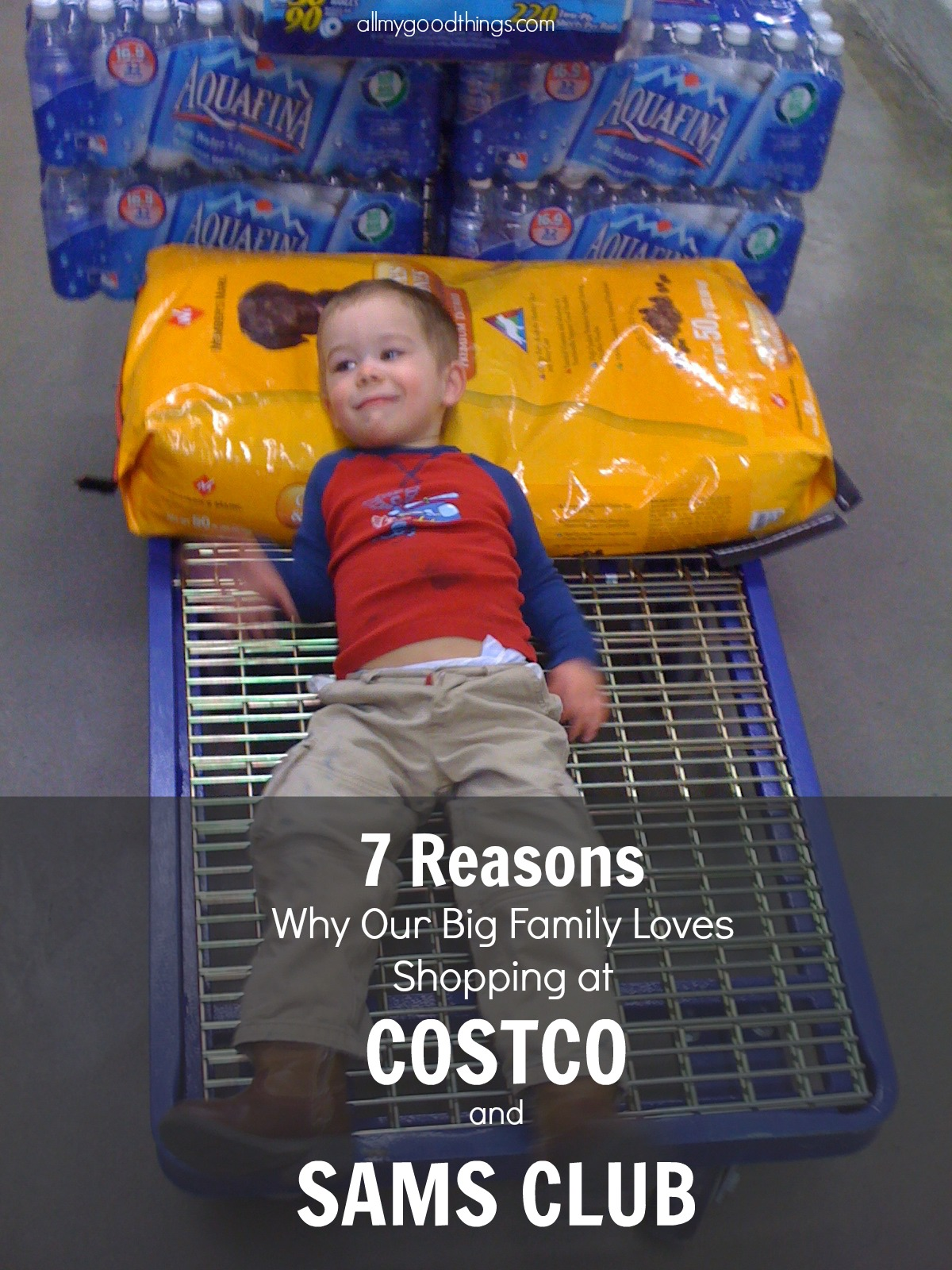 Reasons Why Our Big Family Loves Shopping at Costco and SAMS