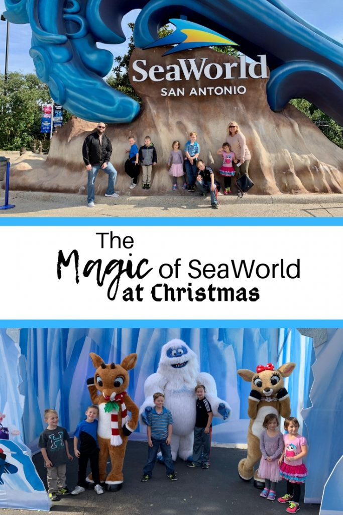 The Magic of SeaWorld at Christmas