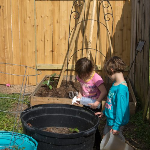 Easy Container Gardening with Children