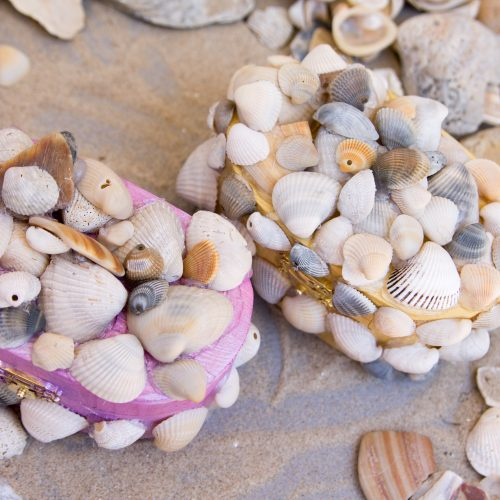 DIY Seashell Treasure Boxes